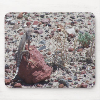 ring tailed lizard mouse pad