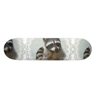 Ringed Raccoon  Skateboard