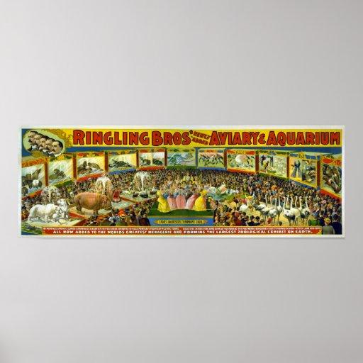 Ringling Bros' / Aviary & Aquarium Posters