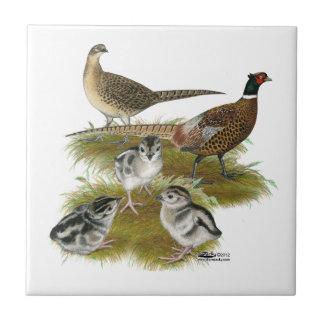 Ringneck Pheasant Family Tile