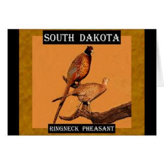 Ringneck Pheasant (South Dakota) Greeting Card