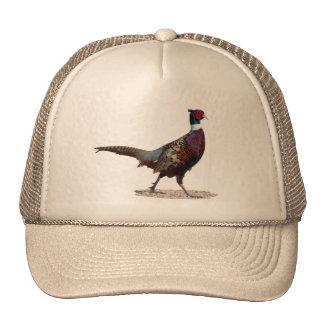 Ringnecked Pheasant Trucker Hats