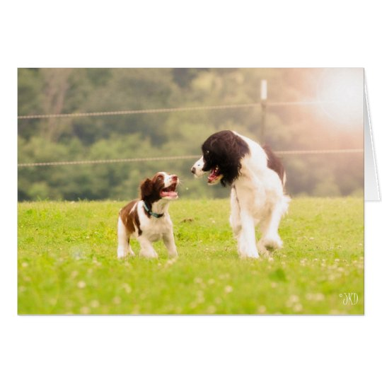 Ringo and Mama Piper Greeting card
