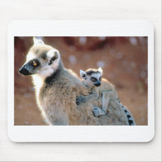 Ringtail Lemur And Baby Mouse Pad