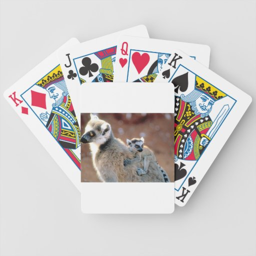 Ringtail Lemur And Baby Bicycle Poker Cards