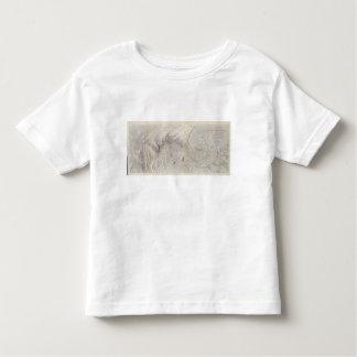 Rio Colorado of the West Toddler T-Shirt