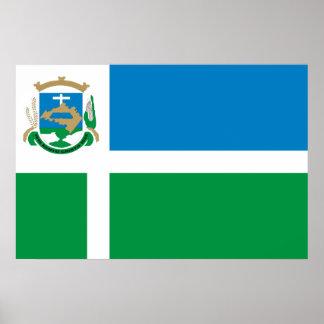 Rio Grande Do Sul, Brazil flag Poster