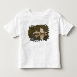 Rio Grande Leopard Frog, Rana berlandieri, two Shirt