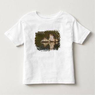 Rio Grande Leopard Frog, Rana berlandieri, two Toddler T-Shirt