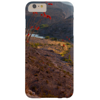 Rio Grande Running Through Chihuahuan Desert Barely There iPhone 6 Plus Case