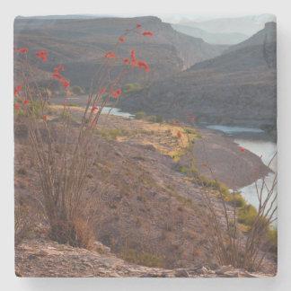 Rio Grande Running Through Chihuahuan Desert Stone Coaster
