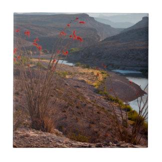 Rio Grande Running Through Chihuahuan Desert Tile