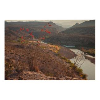 Rio Grande Running Through Chihuahuan Desert Wood Wall Art