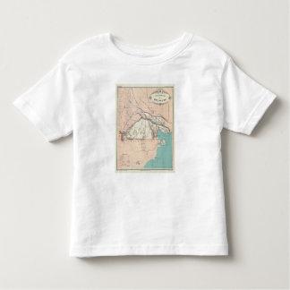 Rio Negro, Argentina Toddler T-Shirt