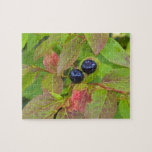 Ripe huckleberries in the Flathead National Puzzles