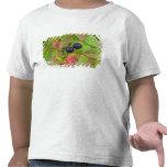 Ripe huckleberries in the Flathead National T-shirt