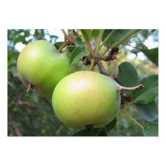 Ripening Apples ATC Large Business Cards (Pack Of 100)