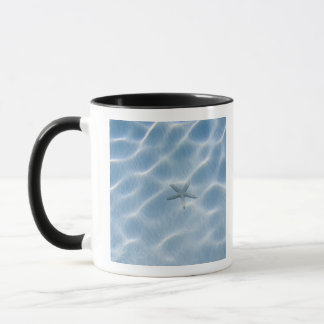 Rippled blue water with starfish mug