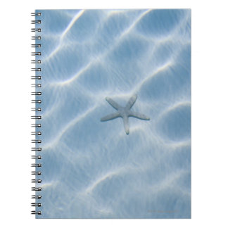 Rippled blue water with starfish spiral notebook