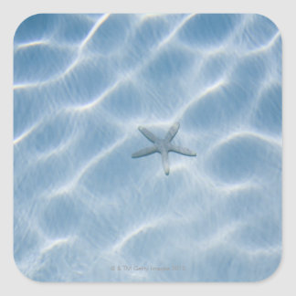 Rippled blue water with starfish square sticker