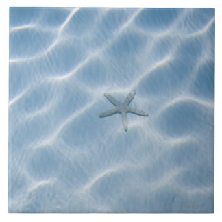 Rippled blue water with starfish tile