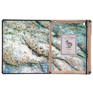Rippled Rock iPad DODO Case Cover For iPad
