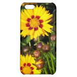 Rising Sun Coreopsis Case For iPhone 5C