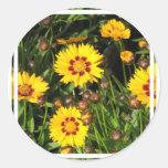 Rising Sun Coreopsis Sticker