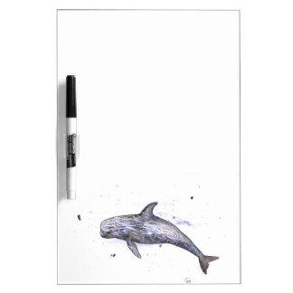 Risso Dolphin Illustration Dry Erase White Board