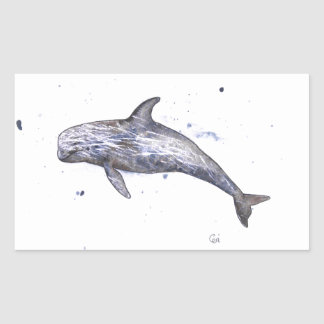 Risso Dolphin Illustration Rectangular Sticker