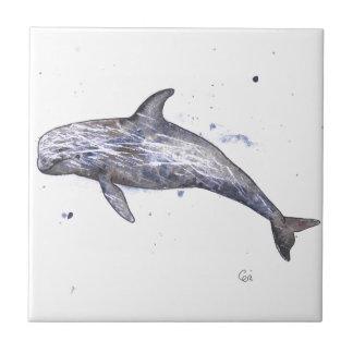 Risso Dolphin Illustration Tile