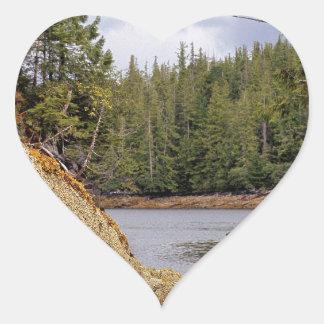 River Channel Temperate Rain Forest Canada Stickers