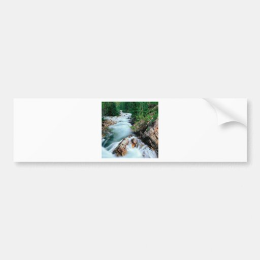 River Crystal Gunnison Forest Colorado Bumper Sticker