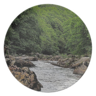 River Dart Vally Rowbrook Plate