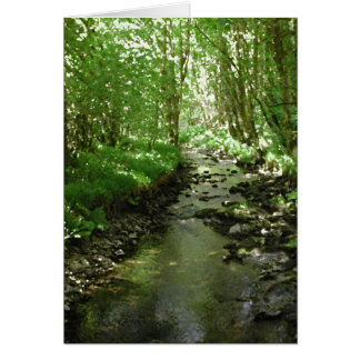 River flowing through woodland. card
