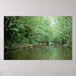 River Habitat, Kentucky Poster