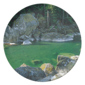 River in North Cascade National Park Party Plates