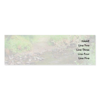River in woodland. pack of skinny business cards