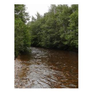 River Nethy Cairngorm National Park Scotland Post Card