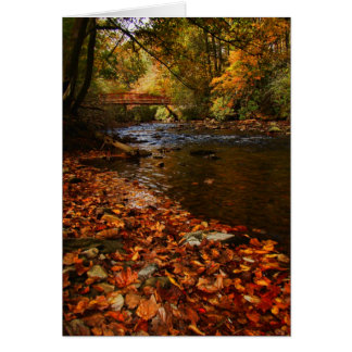 River of Leaves Note Card