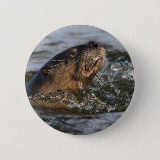 river otter 6 cm round badge