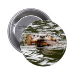 River Otter and Fish Buttons