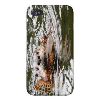 River Otter and Fish Cases For iPhone 4