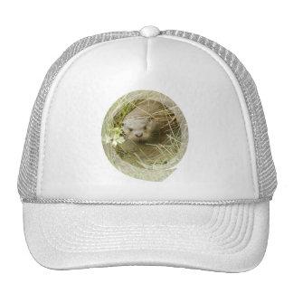 River Otter Habitat Baseball Hat