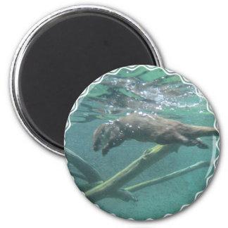 River Otter  Magnet Refrigerator Magnets