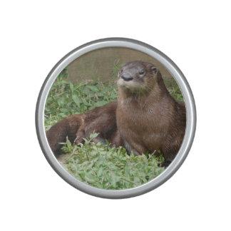 River Otter Speaker