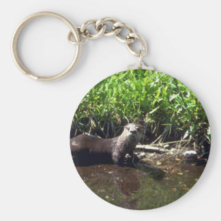 River Otter-summer Key Ring