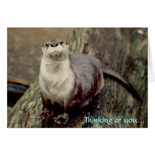 River Otter, Thinking of you... Card