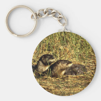 River Otters Key Ring
