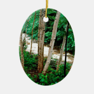 River Paper Birch White New Hampshire Christmas Ornament